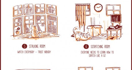 what-if-you-let-a-cat-design-your-home