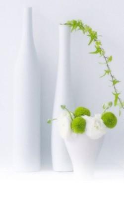Green-Plants-In-White-Bottles-250x443