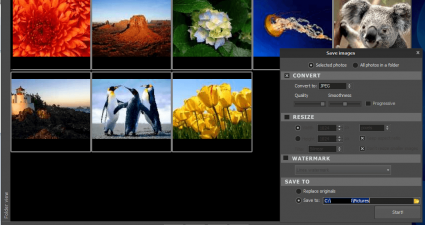 Photoimp Export Tool