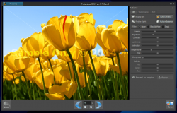 Photoimp for Windows