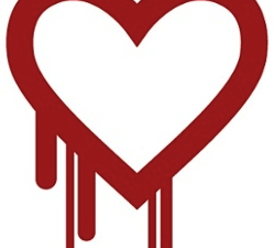heartbleed-bug-logo