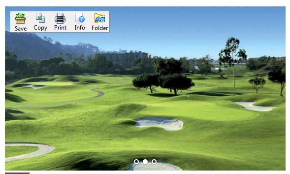 image toolbar