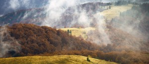 landscape-carpathian-mountains_78169_990x742