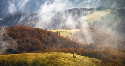 landscape-carpathian-mountains_78169_990x742