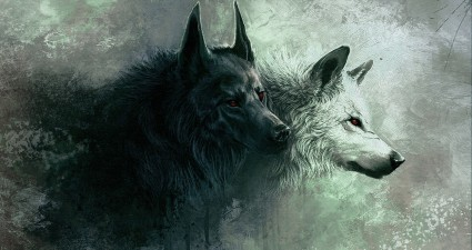 wolf_8-wallpaper-1920x1080