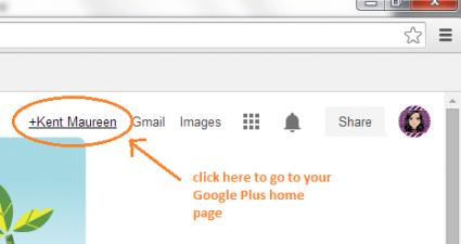 disable Google Plus notifications