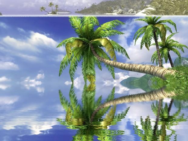 water reflect1