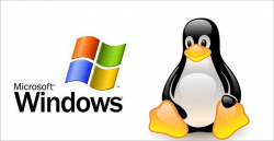 linux_microsoft
