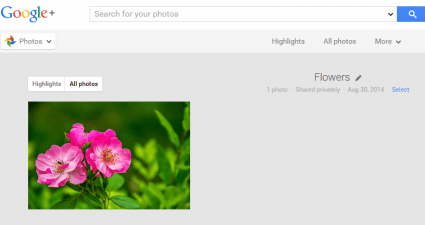 send web photos directly to Google Plus Albums d