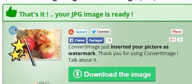 add logo or image as watermark online c