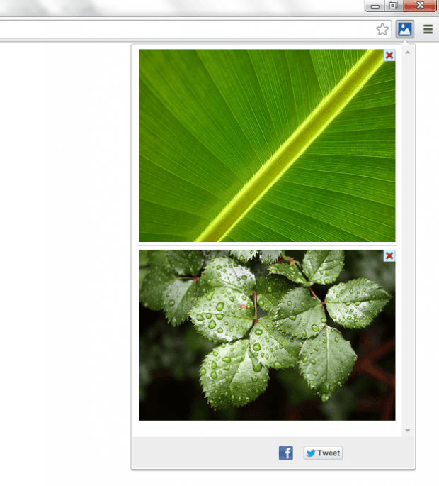 add to image gallery Chrome b