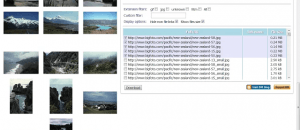 download all files linked to a web page Chrome