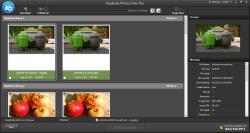 Duplicate Photos Fixer Pro b